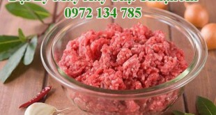 Máy xay thịt tại Thuận An